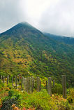 Wisdom path under Lantau peak Royalty Free Stock Photos
