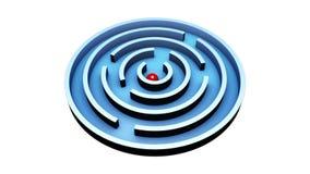 Wisdom  (Round Maze) stock footage