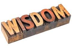 Wisdom word in vintage wood type Stock Images
