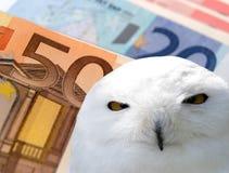 Wise banking Royalty Free Stock Photos