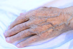 Wise hand. Detail on hand of an older woman Royalty Free Stock Photo