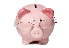 Wise money saving piggy bank cut out royalty free stock image