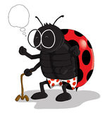 Wise Old Bug. An old ladybug, standing with the help of his cane, remembered something that made him spirited again Stock Photo