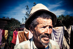 Wise old man Royalty Free Stock Image