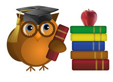 Wise Old Owl with Books Stock Photos