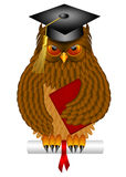Wise Old Owl with Graduation Cap and Diploma. Wise Old Owl with Feathers and Claws Wearing Graduation Cap Holding Diploma BookIllustration Isolated on White Royalty Free Stock Photo