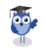Wise old owl teacher Royalty Free Stock Image