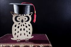 Wise old owl university student on books royalty free stock photos