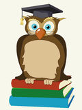 Wise owl. Stylized owl with eye glasses sitting on top of books Royalty Free Stock Images