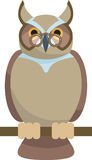 Wise Owl Royalty Free Stock Images