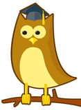 Wise Owl Royalty Free Stock Photography