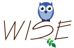 Wise owl. Twig text isolated on white background Stock Photos