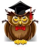Wise owl. Cartoon wise owl in graduation cap Royalty Free Stock Photos
