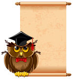 Wise owl Royalty Free Stock Photos