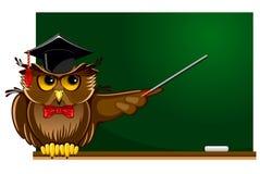 Wise owl Stock Photo