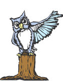 Wise Owl. N owl raises his wing as he tries to prove a point Royalty Free Stock Photos