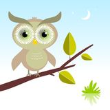 Wise Owl bird vector illustration