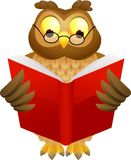Wise owl cartoon Royalty Free Stock Photos
