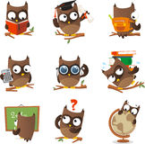 Wise owl cartoon set. Wise owl studying collection. With nine owls in different situations like: reading owl, bachelor owl, school owl, calculator owl, wearing Stock Image