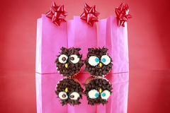 Wise owl cupcakes Stock Photos