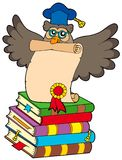 Wise owl with diploma and books Royalty Free Stock Photography