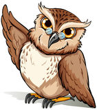 A wise owl. An English idiom showing a wise owl on a white background Royalty Free Stock Image