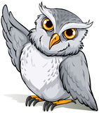 A wise owl idiom Stock Image