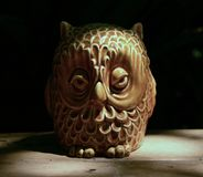 Wise Owl. Mystery twilight wisdom bird evening haunted dark night question secret enigma nocturnal Stock Photo