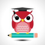 Wise owl with pencil isolated on white background Royalty Free Stock Image