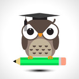 Wise owl with pencil isolated on white background Stock Images