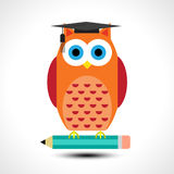 Wise owl with pencil isolated on white background Royalty Free Stock Photography