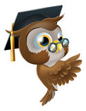Wise Owl Pointing Sign Stock Image