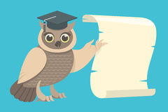Wise Owl with a Scroll. Flat vector illustration of a wise owl in a graduation cap showing the wing on the scroll Stock Images