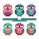 Wise owl set. Set of colorful decorative owls Stock Photos