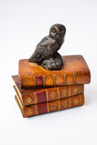 The wise owl sits on the wise books.  Royalty Free Stock Photography