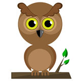 Wise owl. Sitting on the branch Stock Photo