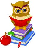 Wise Owl Sitting On Pile Book Stock Image