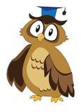 Wise Owl Royalty Free Stock Photo
