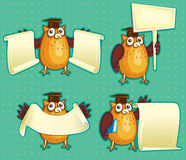 Wise owls with blank sign Royalty Free Stock Image