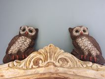 Wise owls message board gray background vintage owl decor Royalty Free Stock Photos