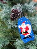 Wish on a christmas tree. Wish hanging on a pine cone and christmas tree Royalty Free Stock Images