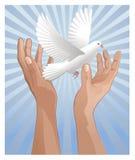 Wish peace Stock Photo