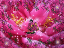 Wish. Sweet composition flower peony red butterfly origin imagination magic Stock Image