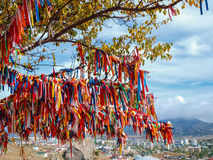 Wish Tree with bright ribbons. Against the walls of the ancient fortress in Sudak Royalty Free Stock Image