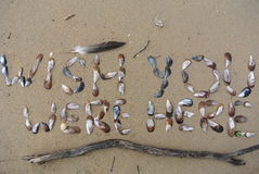 Wish you were here. This is written in seashells on beach sand. On top there is a seagull feather and some sticks and at the bottom an old washed up stick Stock Images