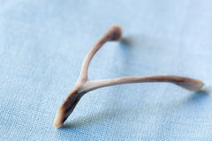 Wishbone Stock Image