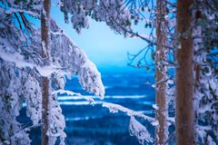 Wishes from blue moment from Lapland Stock Photo