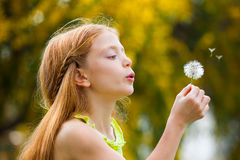 Wishes child blowing dandelion, Royalty Free Stock Photos