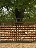 Wishes on a tree in tokyo japan. Wishes on wooden boards on a tree in tokyo japan Stock Images