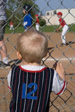 Wishful Thinking. Young child watching baseball game Stock Images